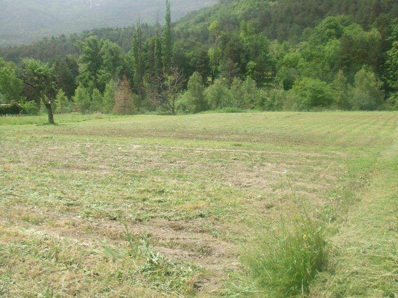 Terrains du constructeur EXPERTIMO • 3500 m² • ANNOT