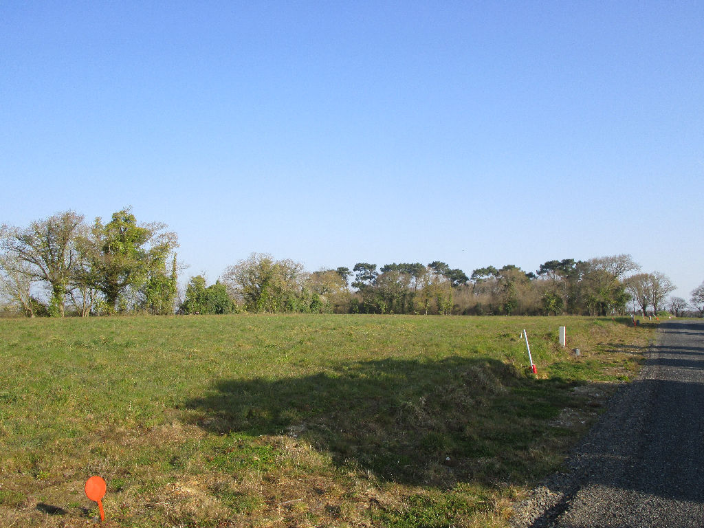 Terrains du constructeur L ADRESSE CHALLANS • 2000 m² • SALLERTAINE