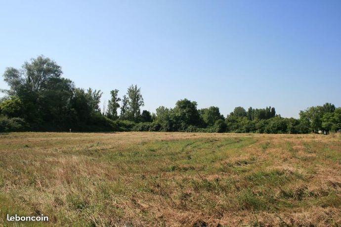 Terrains du constructeur MAISONS FRANCE CONFORT • 849 m² • LE FAUGA