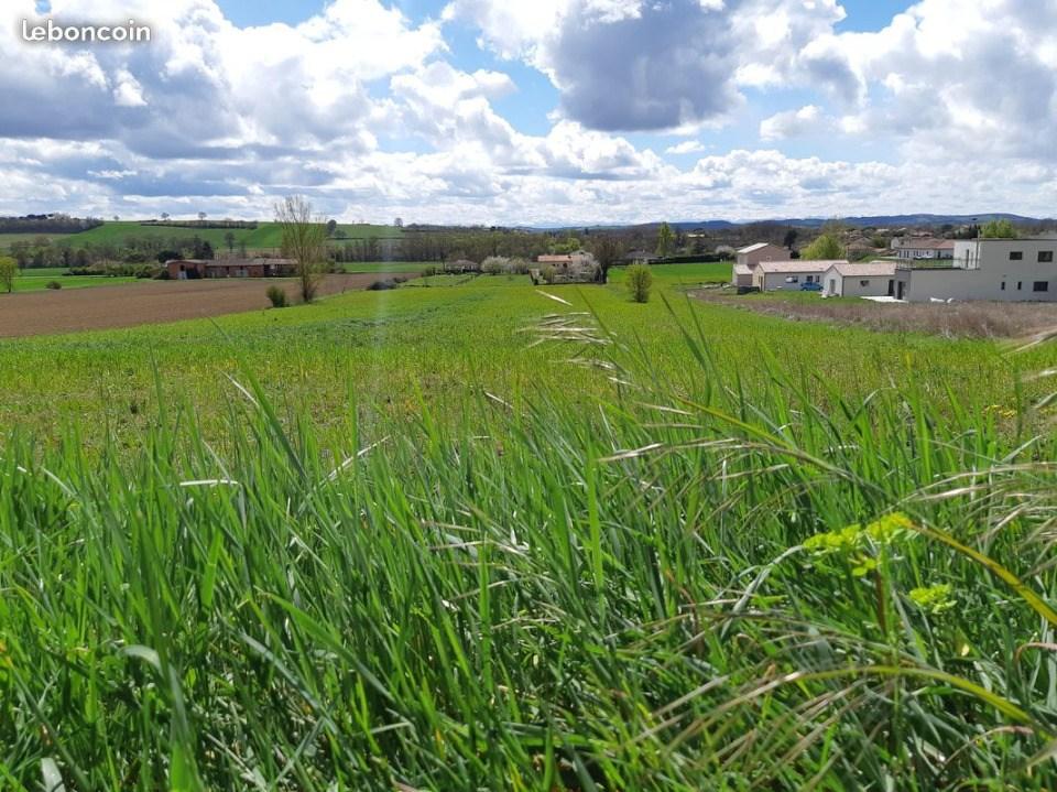 Terrains du constructeur MAISONS FRANCE CONFORT • 435 m² • VENERQUE