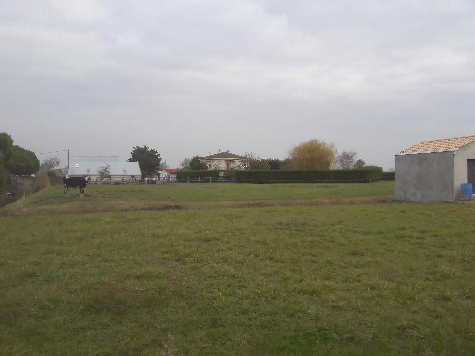 Terrains du constructeur LMP CONSTRUCTEUR • 901 m² • LA BARRE DE MONTS