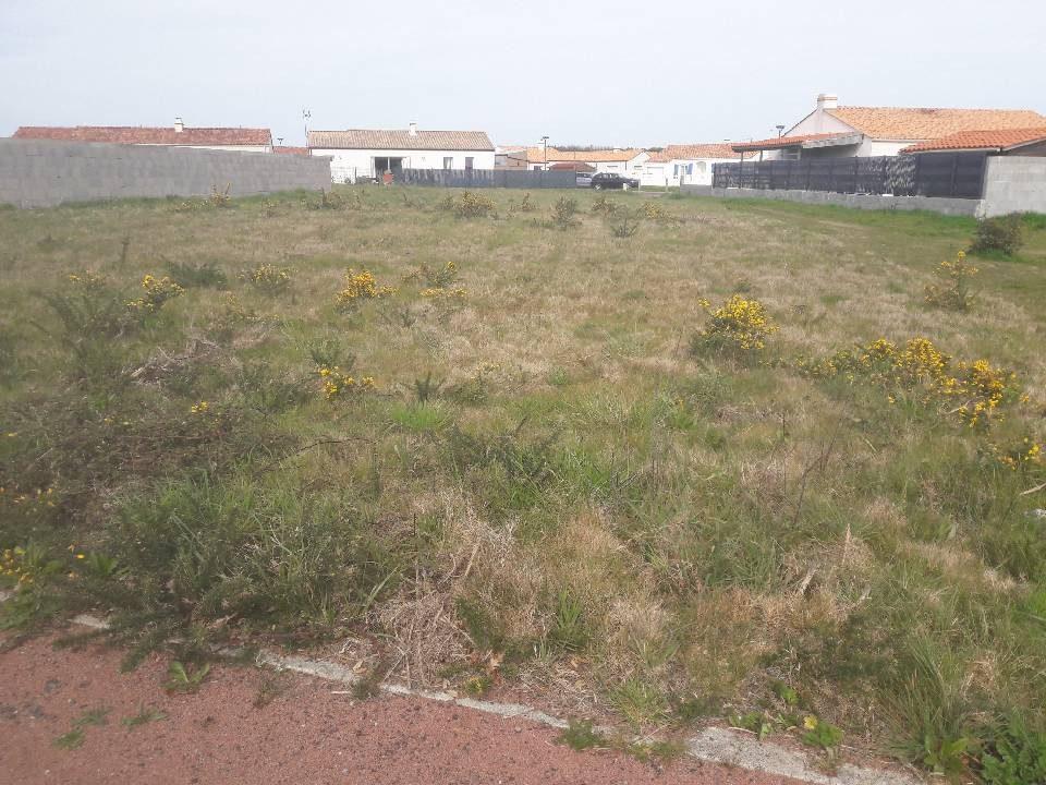 Terrains du constructeur LMP CONSTRUCTEUR • 616 m² • L'AIGUILLON SUR VIE