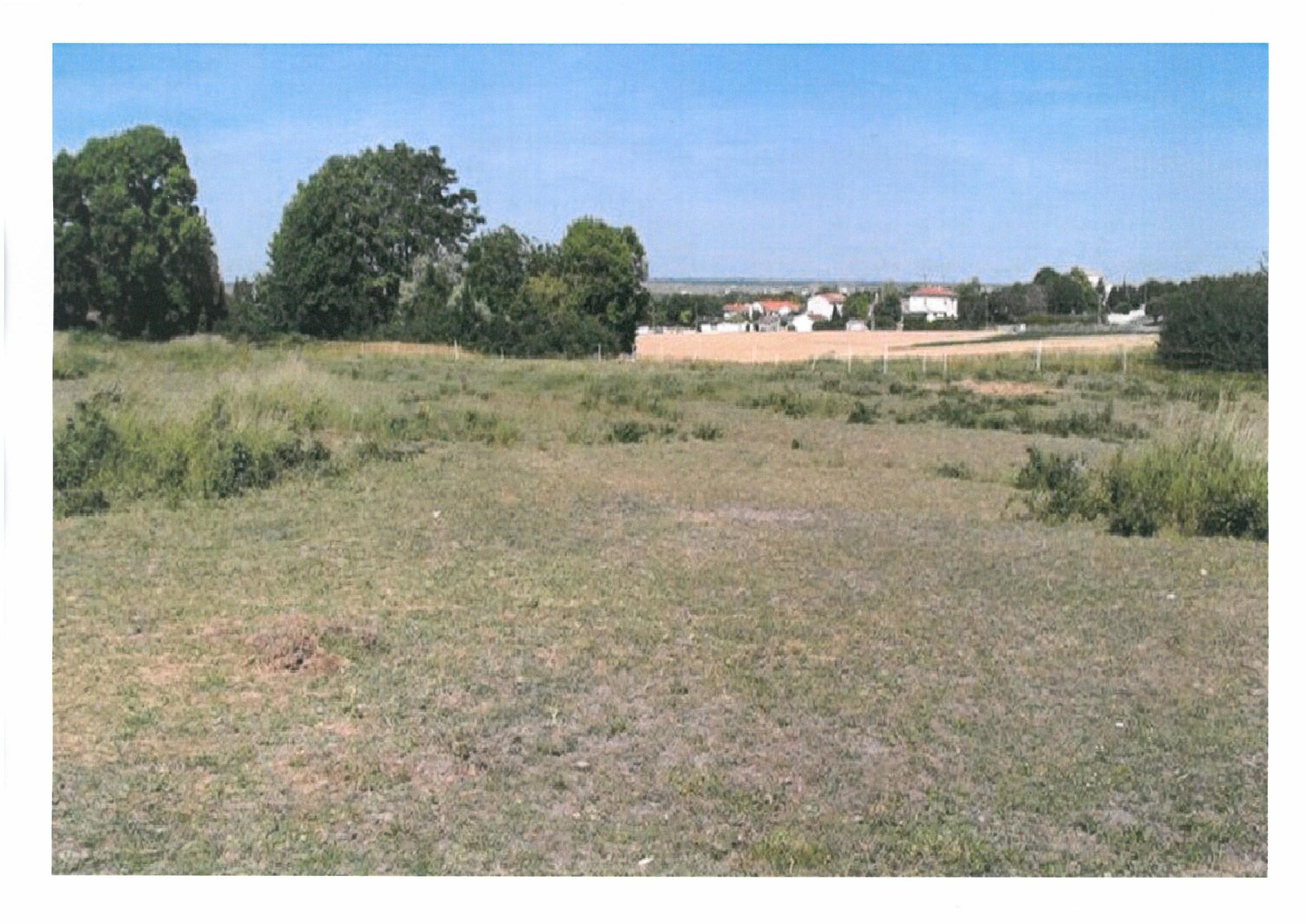 Terrains du constructeur MAISONS DU PAYS CHARENTAIS • 523 m² • ARVERT