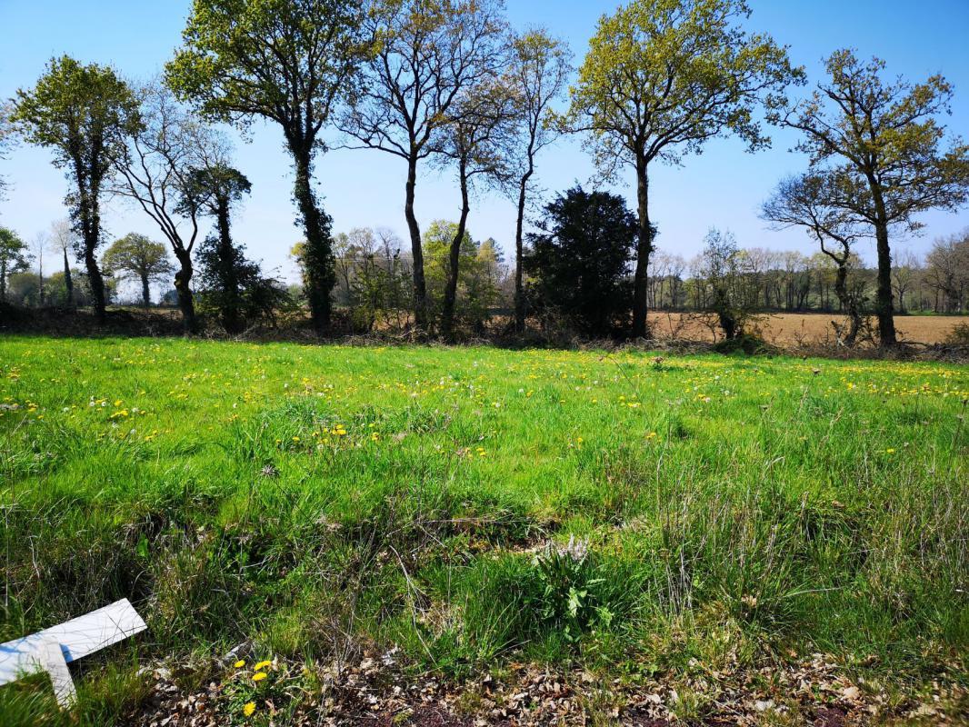 Terrains du constructeur MAISONS KERBEA • 518 m² • BOHAL