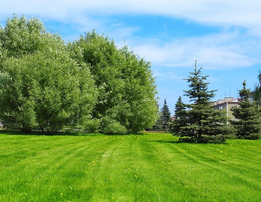 Maisons + Terrains du constructeur LE PAVILLON FRANCAIS • 125 m² • LE MESNIL SAINT DENIS