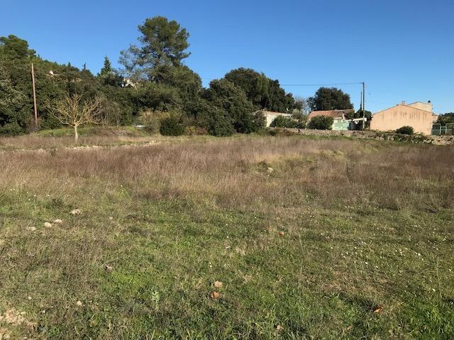 Terrains du constructeur MAISONS BLANCHE • 760 m² • CABASSE