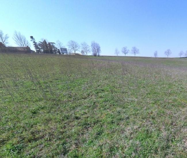 Terrains du constructeur MAISONS FRANCE CONFORT • 700 m² • GEMIL