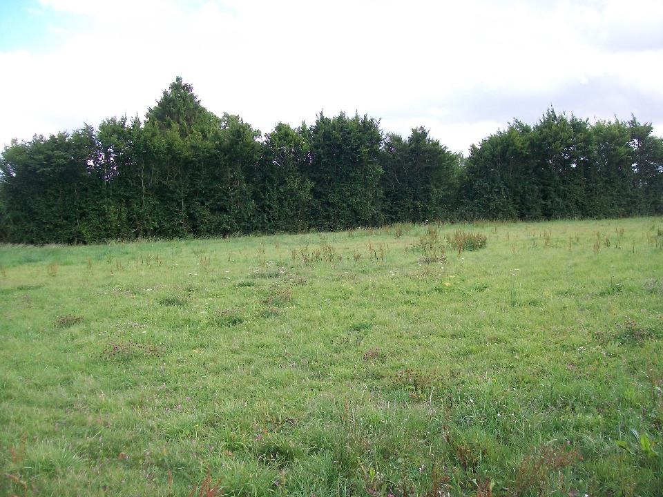 Terrains du constructeur MAISONS FRANCE CONFORT • 595 m² • SAINT AUBIN EN BRAY