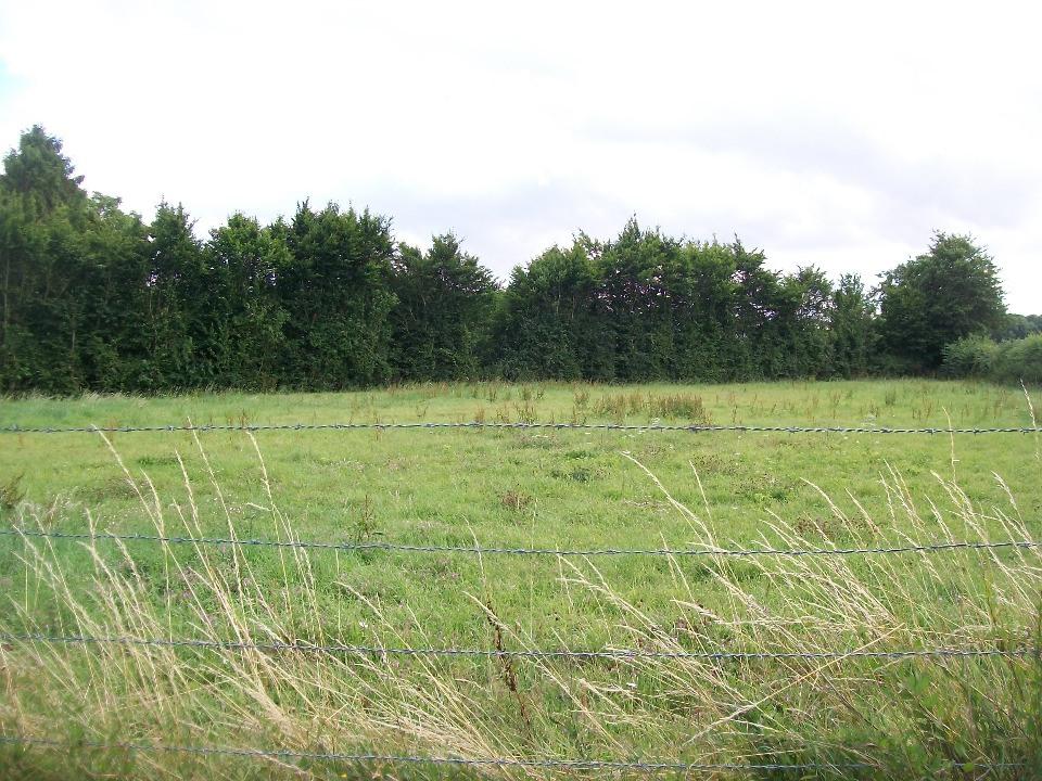 Terrains du constructeur MAISONS FRANCE CONFORT • 1000 m² • CATHEUX