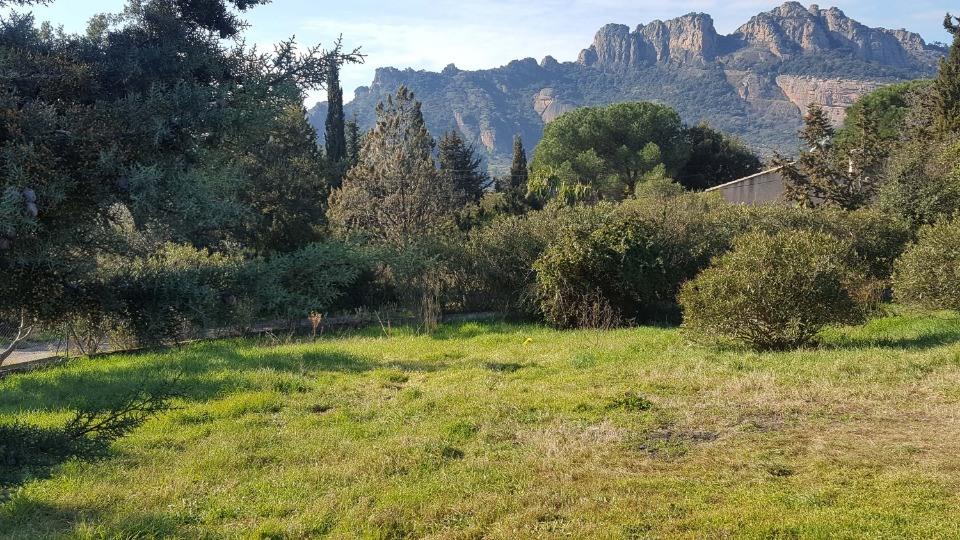 Terrains du constructeur MAISONS FRANCE CONFORT • 500 m² • ROQUEBRUNE SUR ARGENS