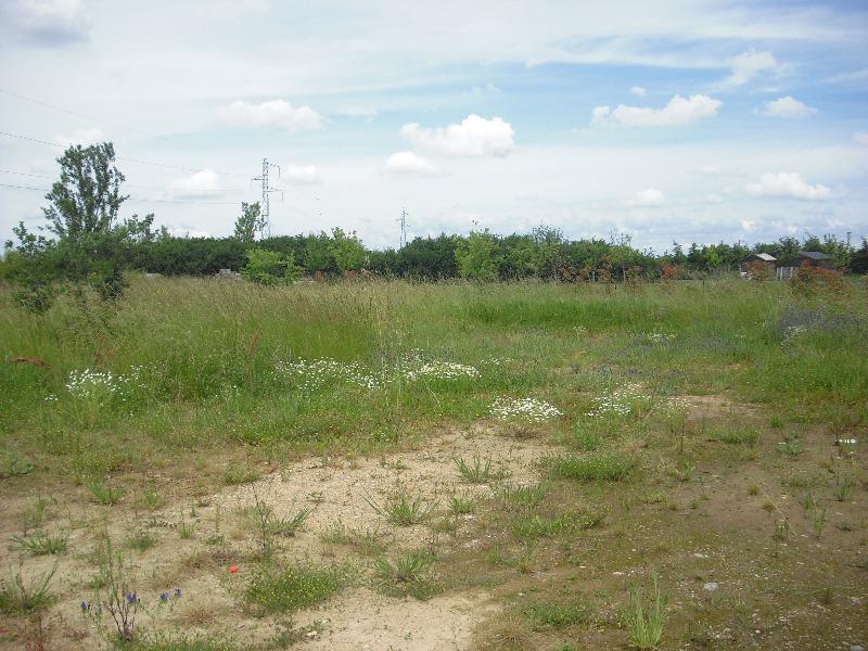Terrains du constructeur SAFTI • 822 m² • MONDONVILLE