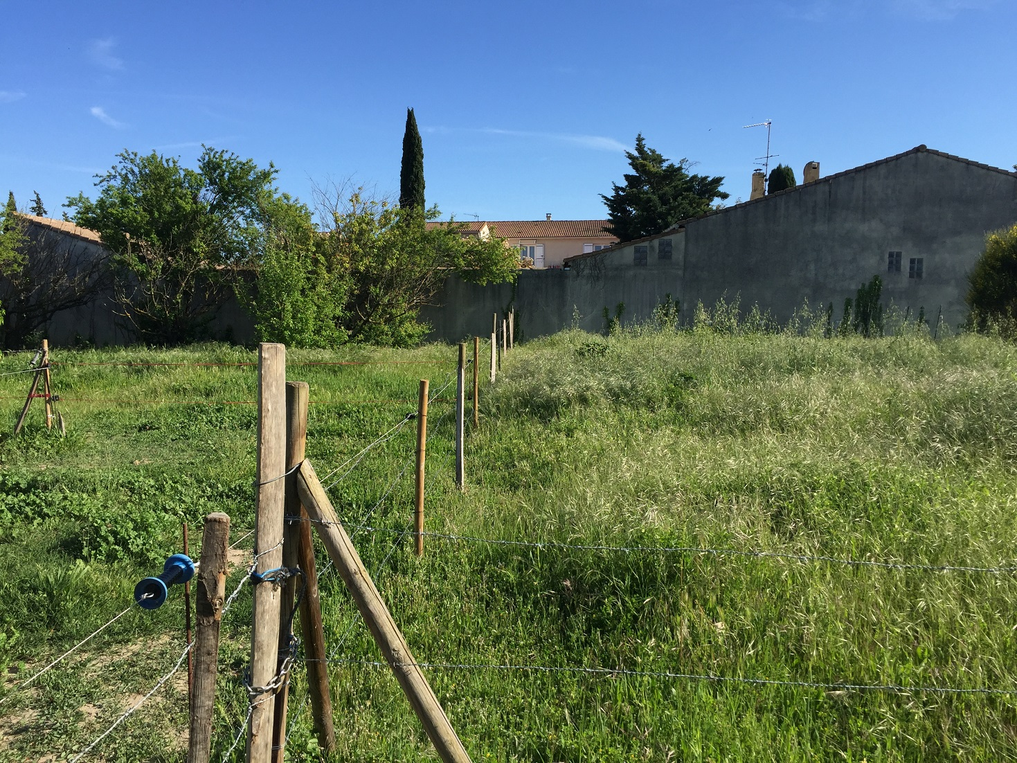 Terrains du constructeur MAISONS SERGE OLIVIER • 785 m² • MEYNES