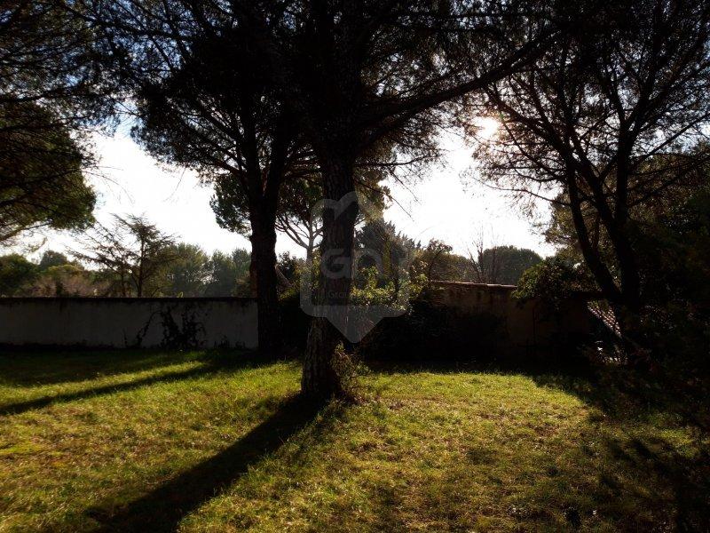 Terrains du constructeur GAIA SUD ET MER IMMO • 0 m² • SAINT LAURENT D'AIGOUZE
