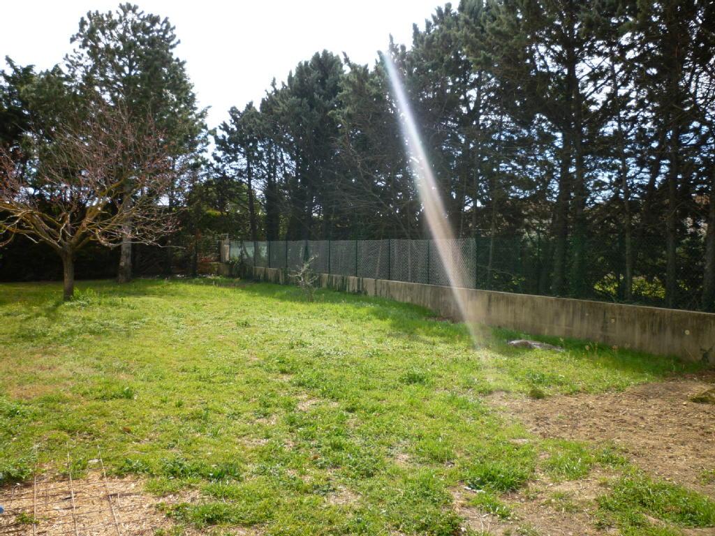 Terrains du constructeur MAXIHOME CLAIRIMMO • 0 m² • CHEVAL BLANC