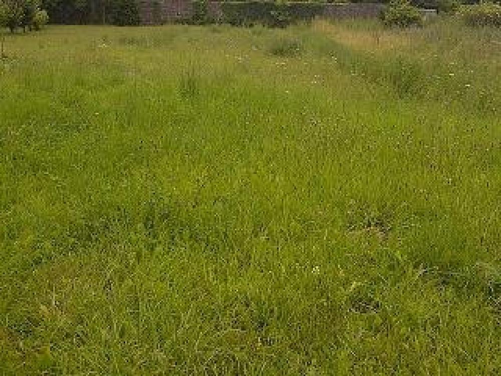 Terrains du constructeur MAISONS ELAN • 363 m² • PONT DU CHATEAU