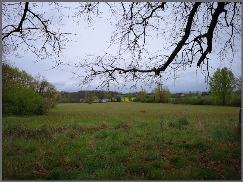 Terrains du constructeur SAFTI • 5000 m² • GRATENS