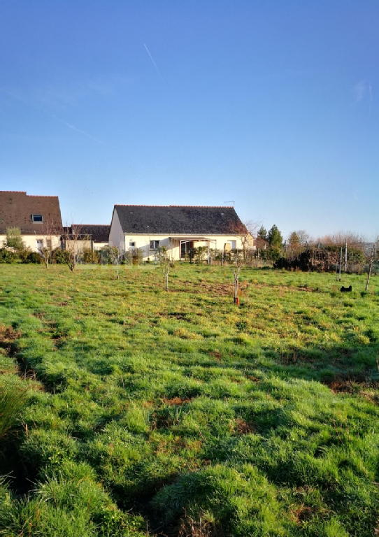 Terrains du constructeur LMD IMMOBILIER • 1000 m² • SAINT LAMBERT DU LATTAY