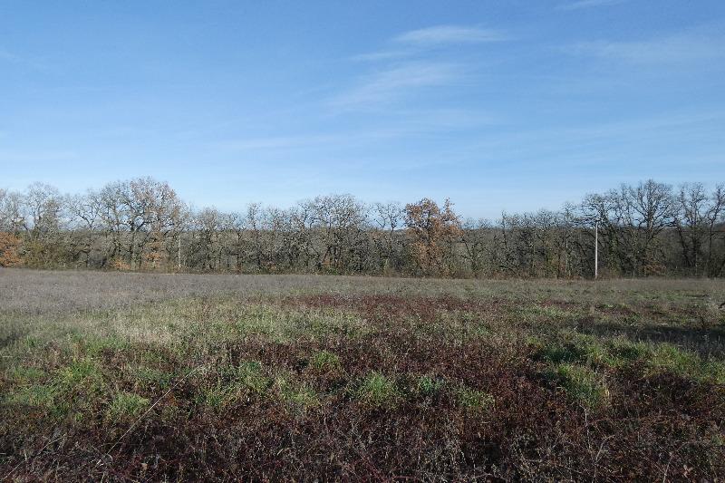 Terrains du constructeur SAFTI • 3012 m² • AMARENS