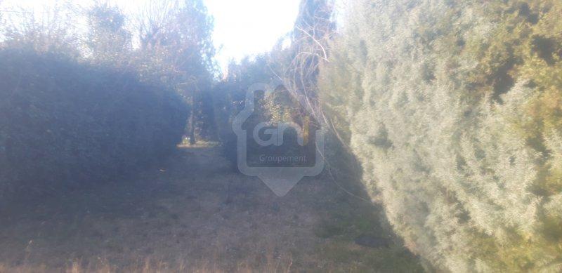 Terrains du constructeur GAIA SUD ET MER IMMO • 413 m² • NIMES
