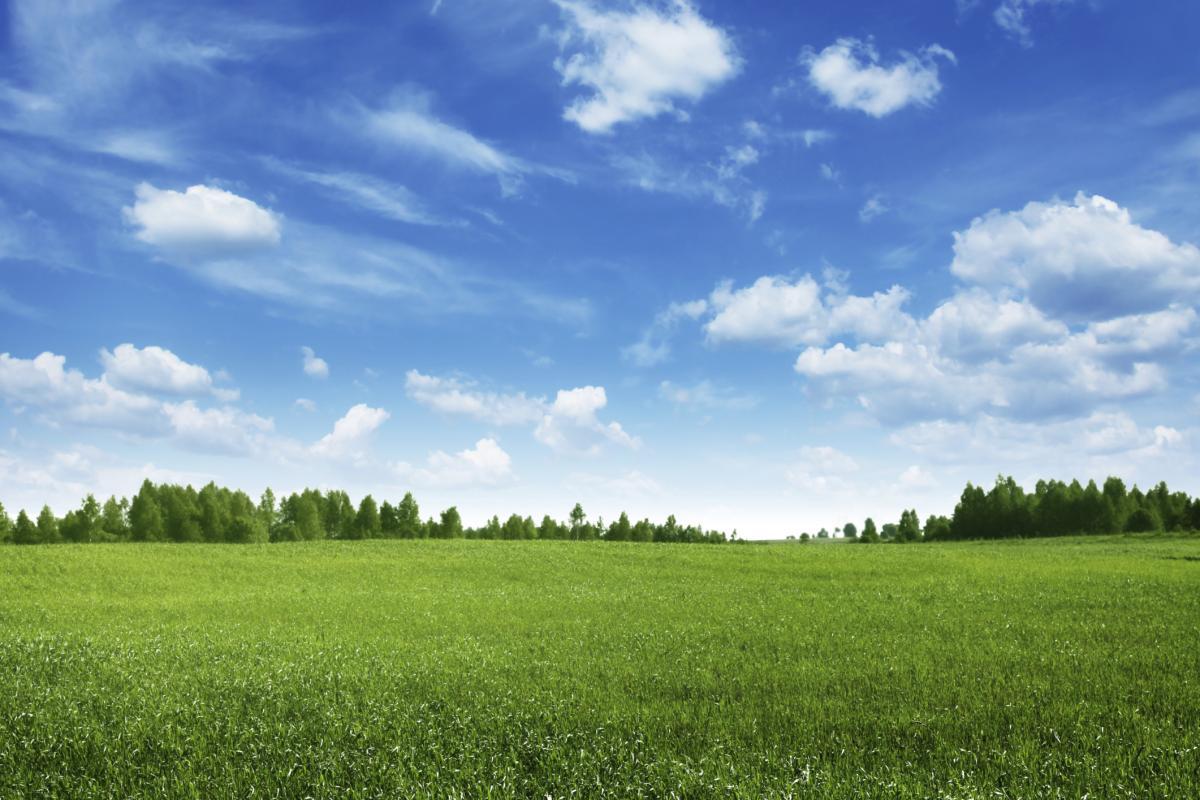 Terrains du constructeur ESQUISS BEAUZELLE • 1005 m² • MONTAIGUT SUR SAVE
