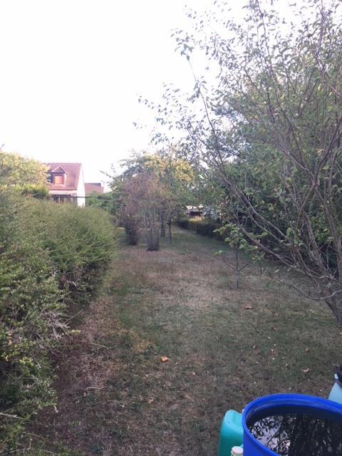 Terrains du constructeur MAISONS LOGELIS • 520 m² • OLLAINVILLE