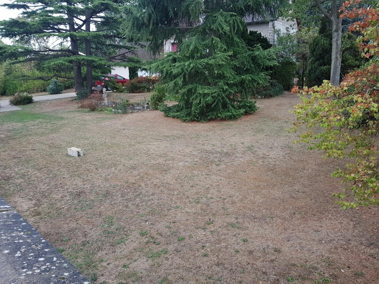 Terrains du constructeur MAISONS LOGELIS • 323 m² • LA VILLE DU BOIS