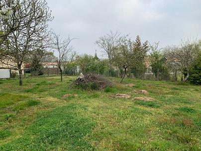 Terrains du constructeur ALPHA CONSTRUCTIONS • 465 m² • AVENSAN
