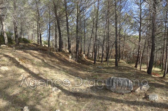 Terrains du constructeur DRAGUIMMO • 5795 m² • DRAGUIGNAN