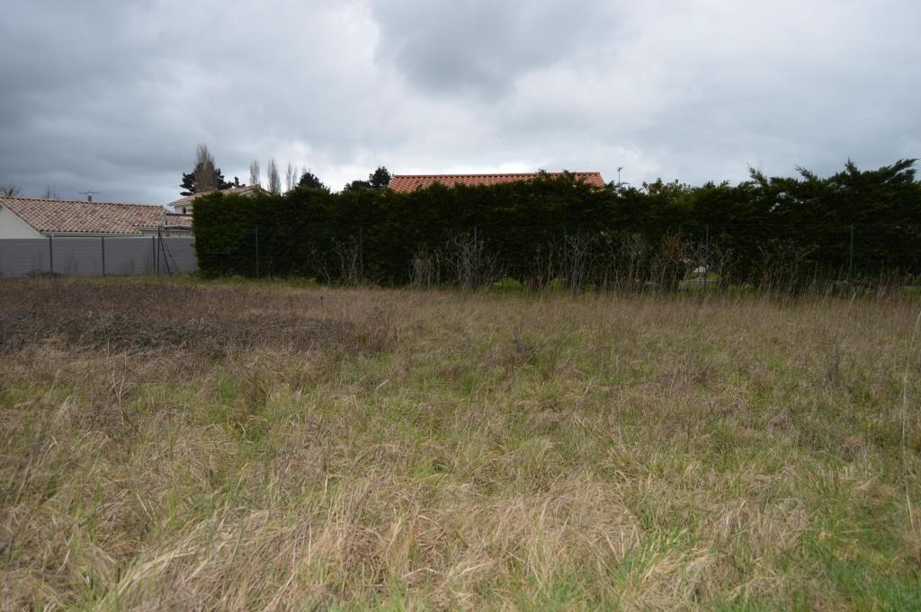 Terrains du constructeur AJP IMMOBILIER • 846 m² • CHALLANS