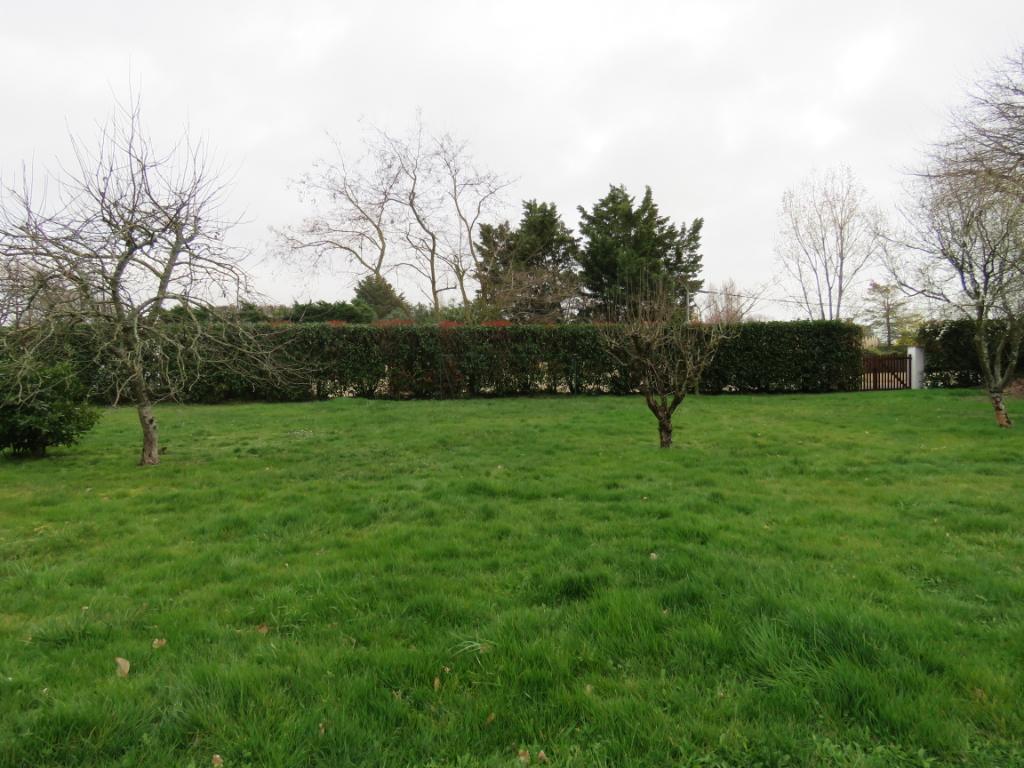 Terrains du constructeur ORPI AGENCE DES DEUX LIONS • 475 m² • TALMONT SAINT HILAIRE