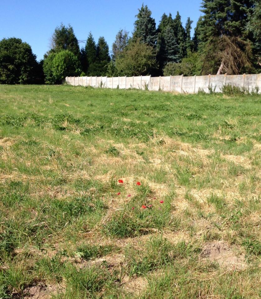 Terrains du constructeur MAISONS FRANCE CONFORT • 432 m² • LA HOUSSAYE EN BRIE
