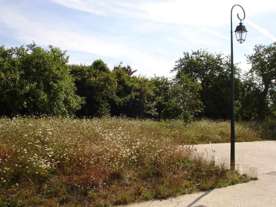Terrains du constructeur MAISONS FRANCE CONFORT • 471 m² • LE CHATELET EN BRIE