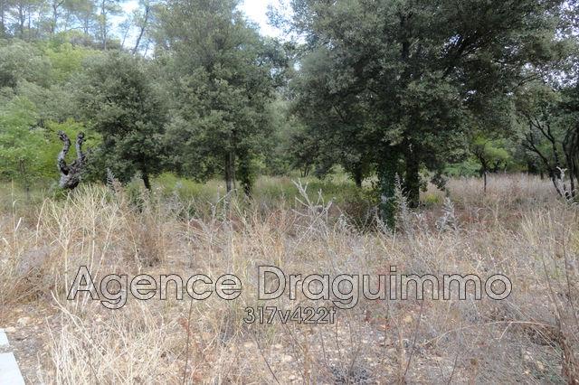 Terrains du constructeur DRAGUIMMO • 903 m² • LA MOTTE