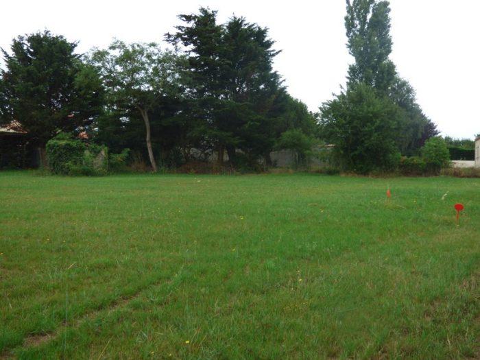 Terrains du constructeur AGENCE DURET • 703 m² • TALMONT SAINT HILAIRE