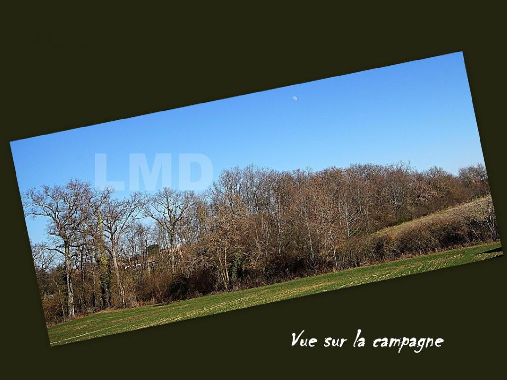 Terrains du constructeur LMD IMMOBILIER • 965 m² • LABASTIDE CLERMONT