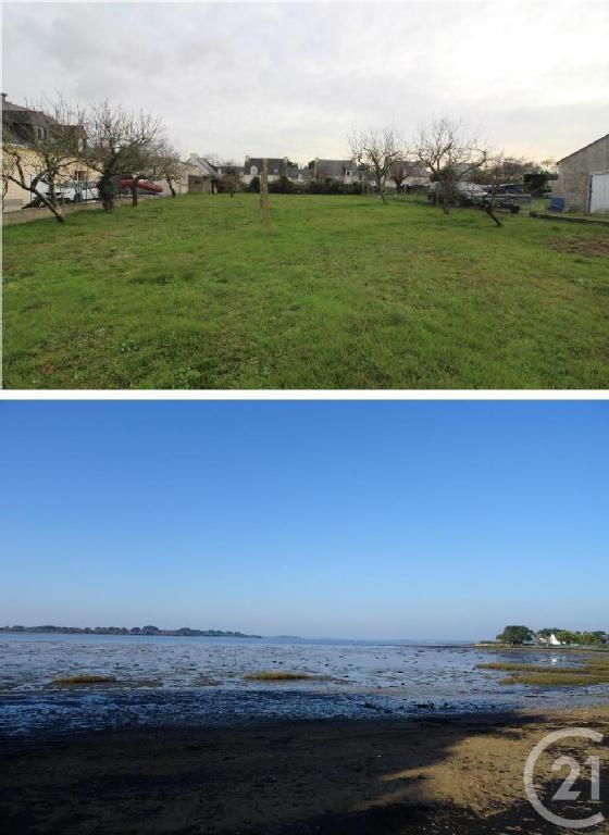 Terrains du constructeur C21 JEGO IMMO SARZEAU • 656 m² • SAINT ARMEL