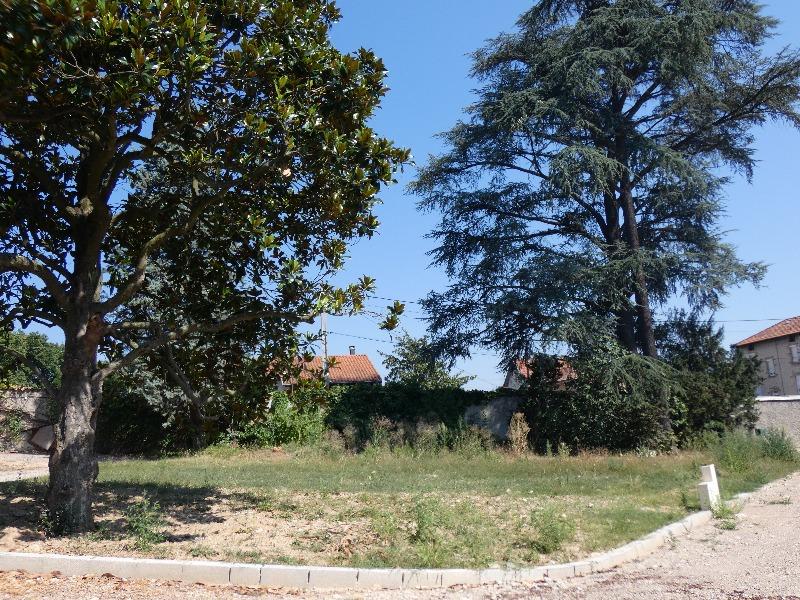 Terrains du constructeur MEGAGENCE • 575 m² • SAINT ROMAIN EN GAL