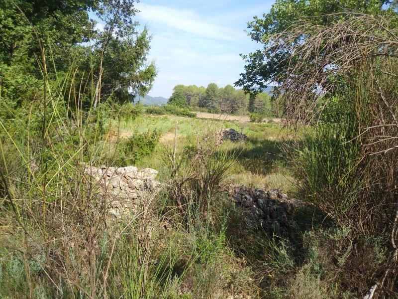 Terrains du constructeur EXPERTIMO • 6416 m² • FIGANIERES