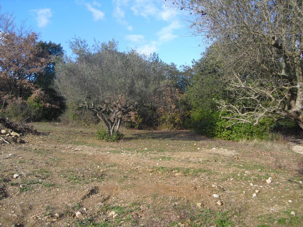 Terrains du constructeur MAXIHOME CLAIRIMMO • 625 m² • UZES