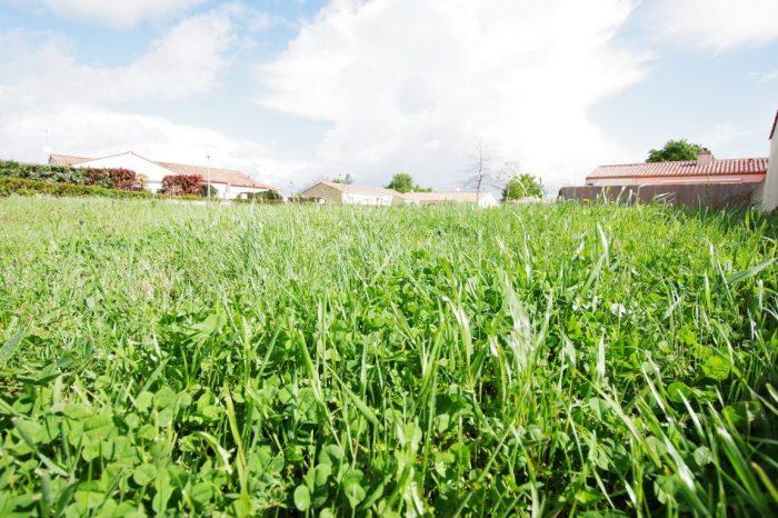 Terrains du constructeur AGENCE DURET • 501 m² • GROSBREUIL
