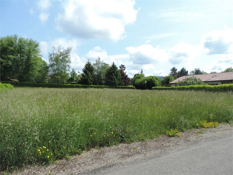 Terrains du constructeur CAPI FRANCE • 600 m² • VILLEREVERSURE