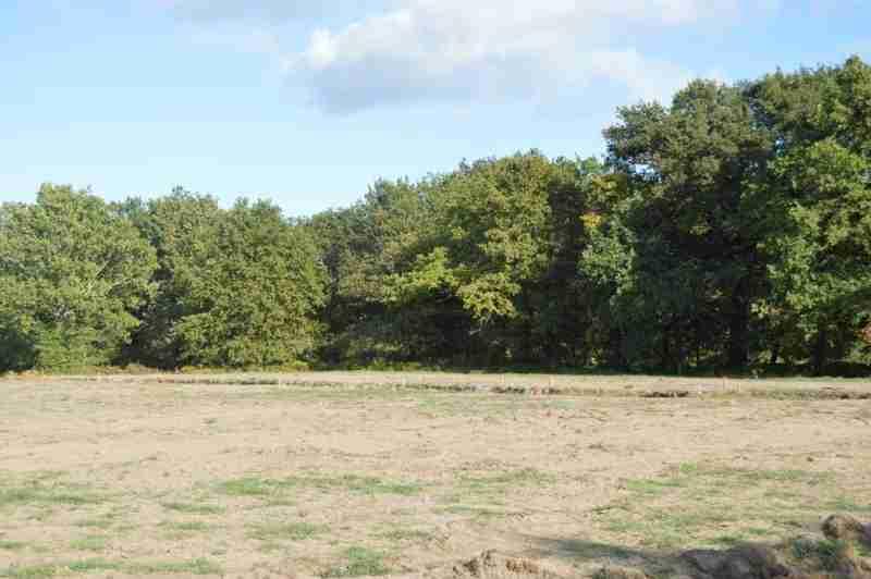 Terrains du constructeur SQUARE HABITAT CHALLANS • 397 m² • CHALLANS