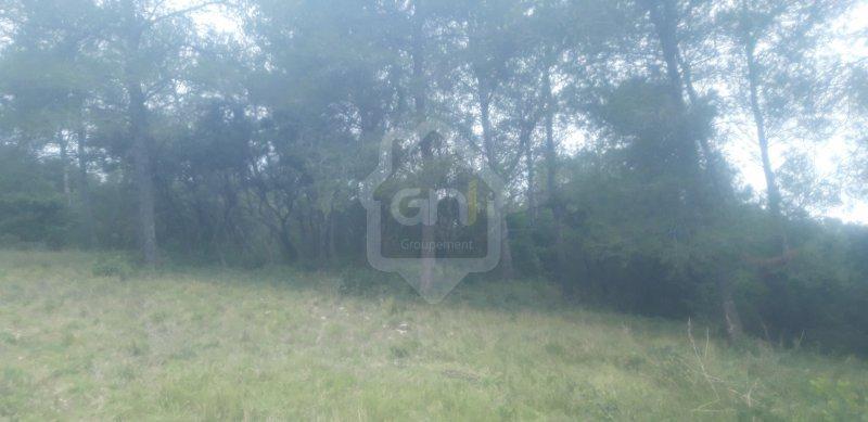 Terrains du constructeur GAIA SUD ET MER IMMO • 4005 m² • NIMES