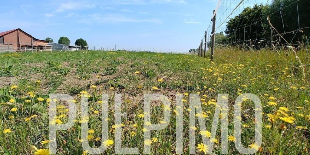 Terrains du constructeur PULPIMO • 0 m² • LESTREM
