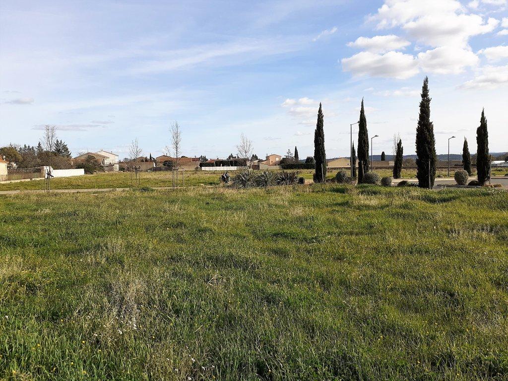 Terrains du constructeur IMMOBILIER DU MINERVOIS • 650 m² • PEPIEUX