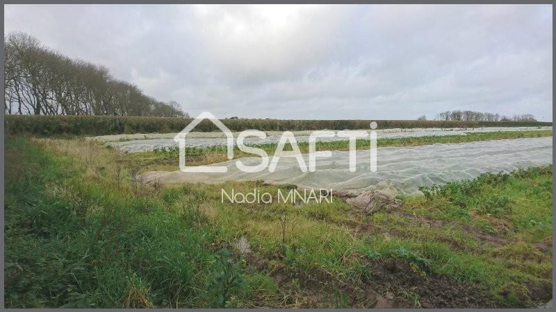 Terrains du constructeur SAFTI • 1295 m² • CLEDER