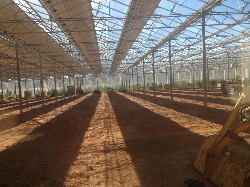 Terrains du constructeur IMMO RESEAU • 87000 m² • HYERES