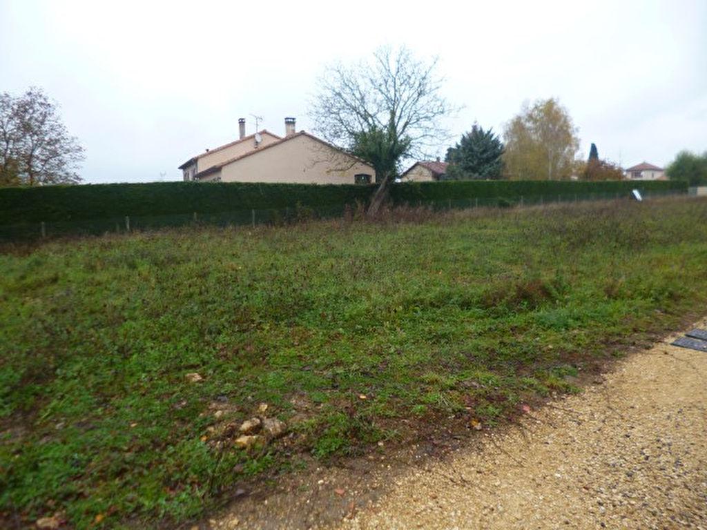 Terrains du constructeur LE TUC IMMOBILIER • 406 m² • POITIERS