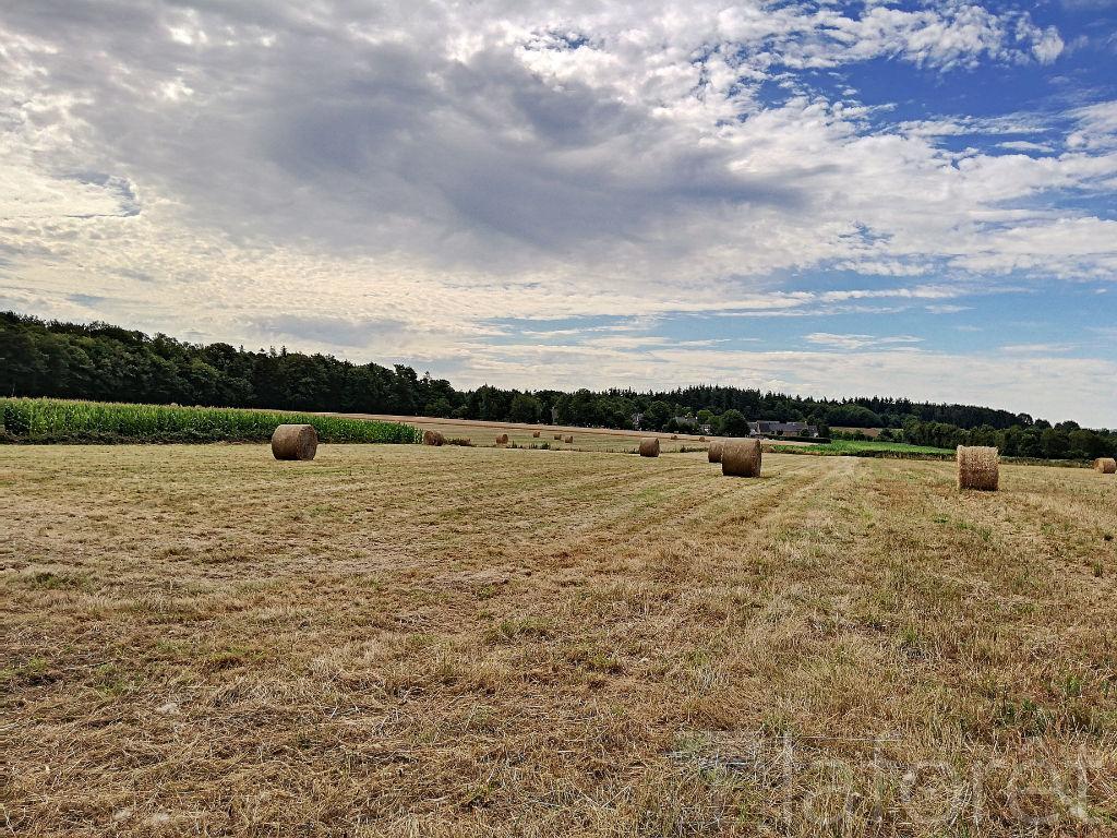 Terrains du constructeur MAUDIM Laforêt • 4980 m² • PLEUGUENEUC