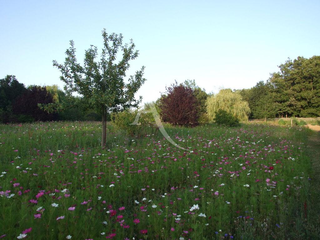 Terrains du constructeur IMMOBILIER AGENAIS JASMIN • 3521 m² • CASTELLA